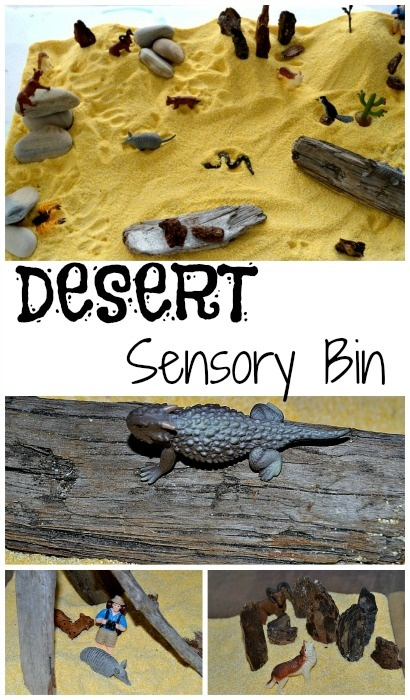 Easy to create desert sensory bin. Play and learn about habitats from www.blogmemom.com