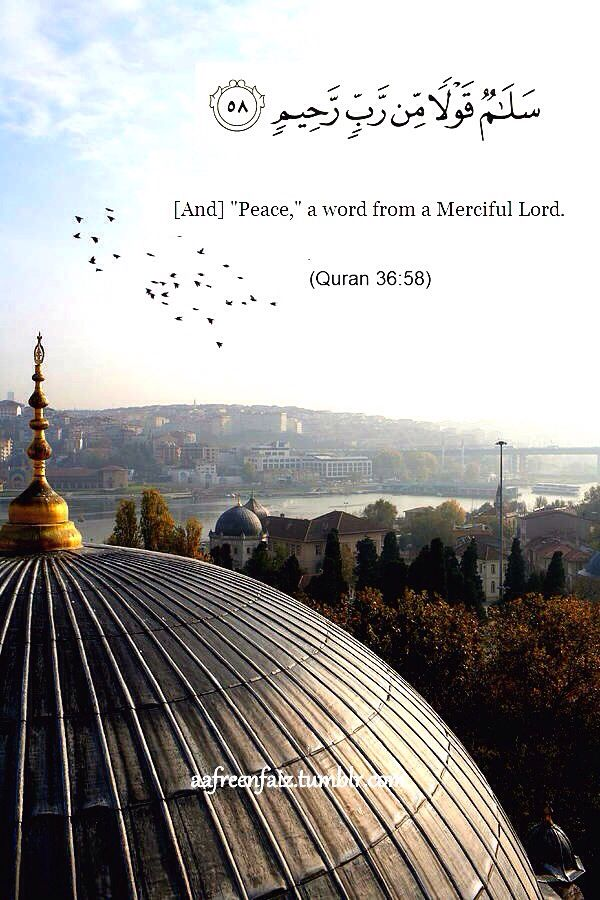 Qur'an surah Yasin 36:58: (It will be said to them): Salamun (peace be on you), a Word from the Lord (Allah), Most Merciful.