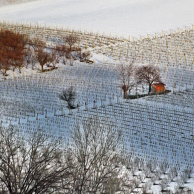 Langhe d'inverno, Piemonte, Italy