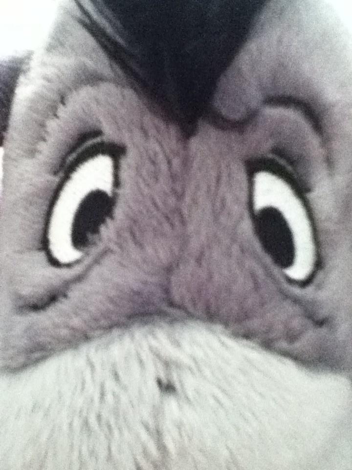 1000 Images About Eeyore Stuff On Pinterest Disney