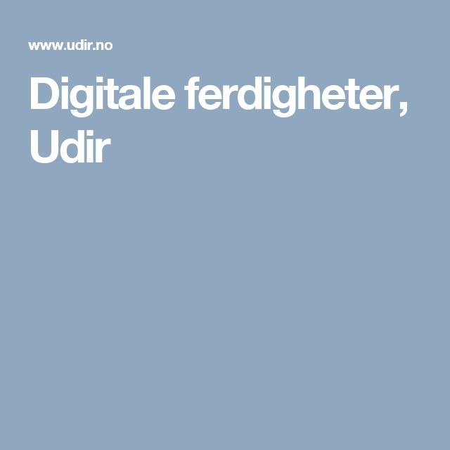 Digitale ferdigheter, Udir