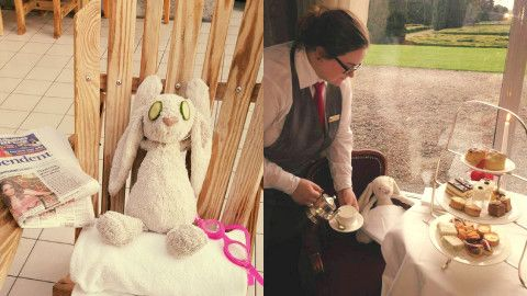 Stuffed toy goes on vacation after it's left behind at a hotel