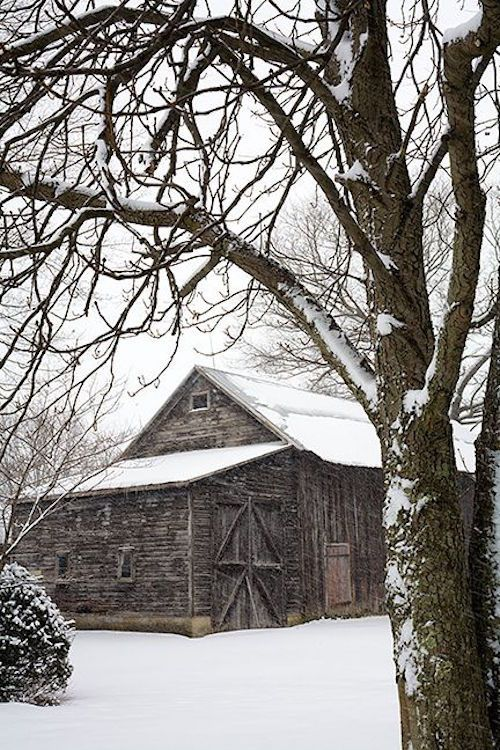 What a pretty barn!! This has a shed on the side like so many did back in the day. Oh, so postcard perfect - found on theexposuresgallery.com.