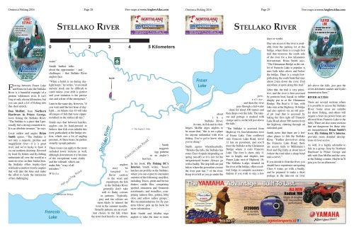 Photo thumbnail: River of the Day: Stellako River