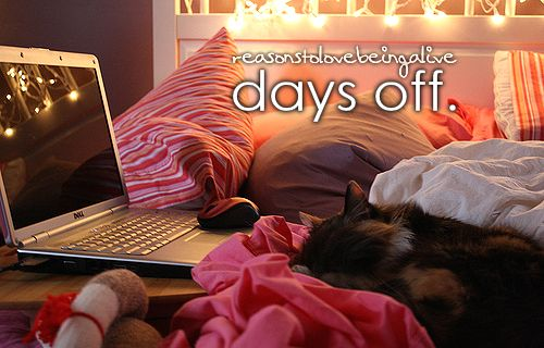 : Blankets Forts, Cat, Schools, Mondays, Laptops, Christmas Lights, Just Girly Things, Girls Things, Justgirlythings