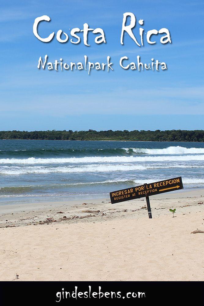 Cahuita ist der zweitälteste Nationalpark des Landes und umfasst etwas mehr als einen Hektar Fläche. Der Nationalpark befindet sich 15km nördlich von Puerto Viejo de Talamanca. Es gibt zwei Eingänge zum Nationalpark. Wir empfehlen euch den Eingang bei dem kleinen Ort Cahuita. Hier zahlt man nur eine kleine Spende, gibt es einen sicheren Parkplatz und einen kleinen Supermarkt. Im Nationalpark gibt es zahlreiche Picknicktische. #CostaRica #Cahuita #Nationalpark #Roadtrip