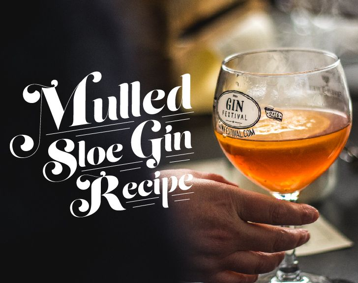 Mulled Sloe Gin Recipe