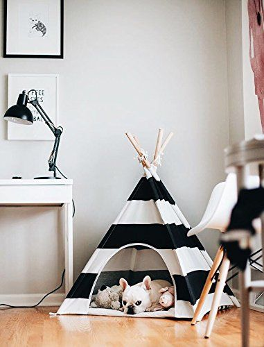 little dove Pet Teepee Dog House Toy Tent Dog Bed 24 Inch... https://www.amazon.com/dp/B01LKOCBQA/ref=cm_sw_r_pi_dp_x_9cUdybVHQC1JE