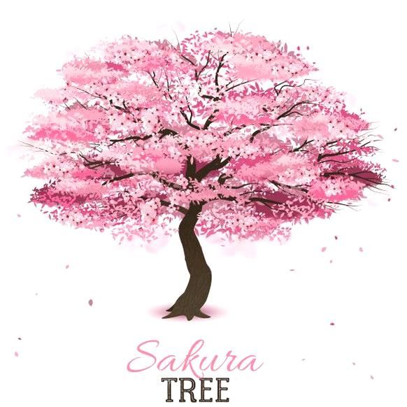 Pin By Alejandra Cassandra On Quality Pins Cherry Blossom Tree Tattoo Blossom Tree Tattoo Tree Drawing