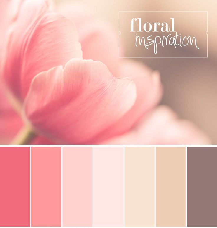 Colour Palette InspiredBy Lush Floral Hues | Sofia Damén | photo by http://www.dmkphotography.fi/