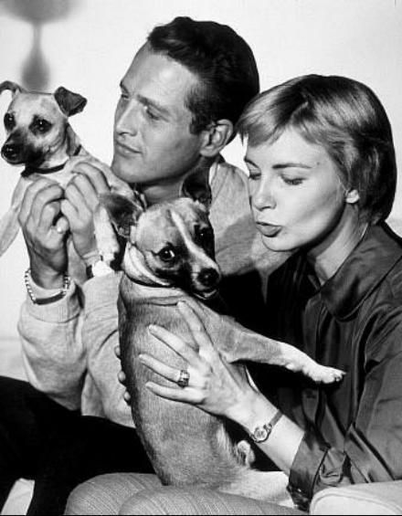 Paul Newman and wife Joanne Woodward with their pets