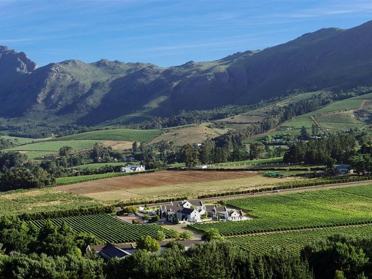 Zorgvliet Wines Country Lodge - The Zorgvliet Wines Country Lodge is situated in the heart of the Stellenbosch winelands, only five kilometres from Stellenbosch. This traditional wine estate offers bed and breakfast accommodation in ... #weekendgetaways #stellenbosch #southafrica