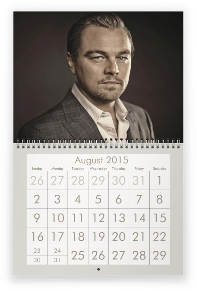 LEONARDO DICAPRIO 2015 Wall Calendar - CATCH OUR SALE ! $27.99 free usa shipping