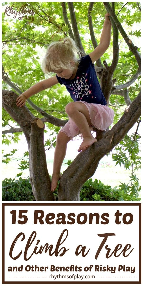 Risky Play Why Children Love It And >> 15 Reasons To Climb A Tree And Other Benefits Of Risky Play Kids