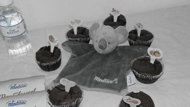 """Muffins au cacao """"Mon premier dessert sans lait"""" Modilac et Mont Roucous"""