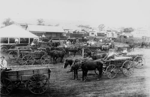 Market Day at Boonah Railway Yards
