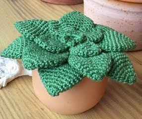 CAPTUS  VERPATRÓN14146  lana verde lana marrón maceta guata para el relleno ganchillo y aguja de lana