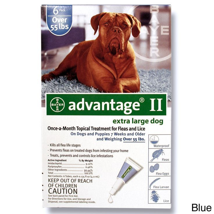 Advantage Ii For Dogs 6 Pack Green Bayer Cheapest Way To Treat Heartworms Safest Heartworm Medicati Flea Control For Dogs Flea Control Dogs And Puppies