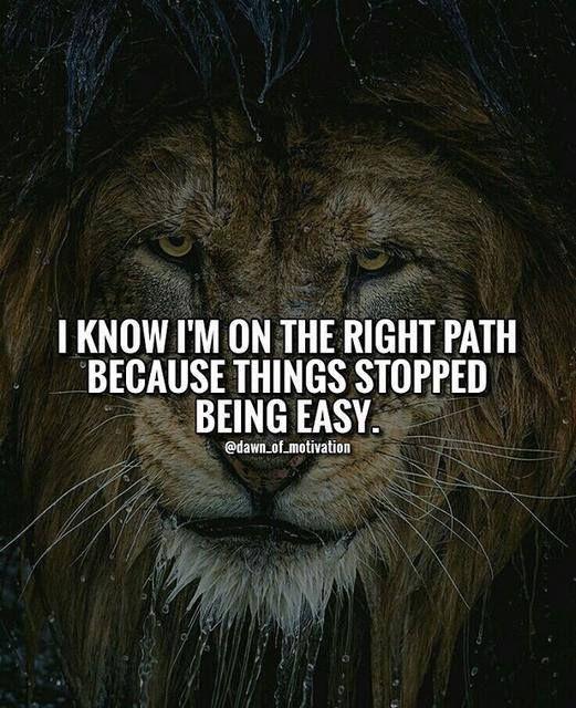 Я знаю, что я на правильном пути, потому-то перестало быть легко.
