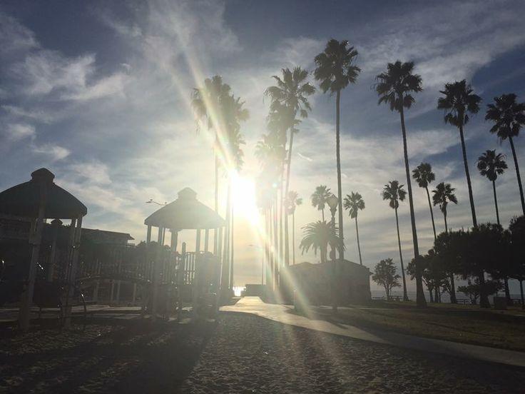 Park at the beach!!