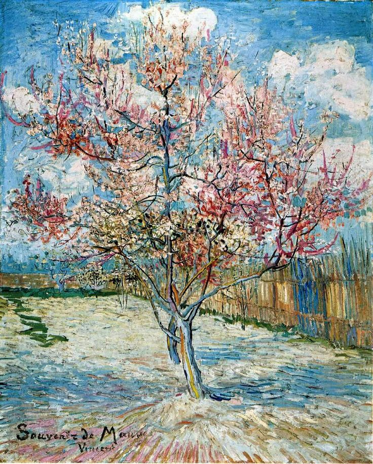 Van Gogh Wallpaper: 81 Best Close Up Eyes Images On Pinterest