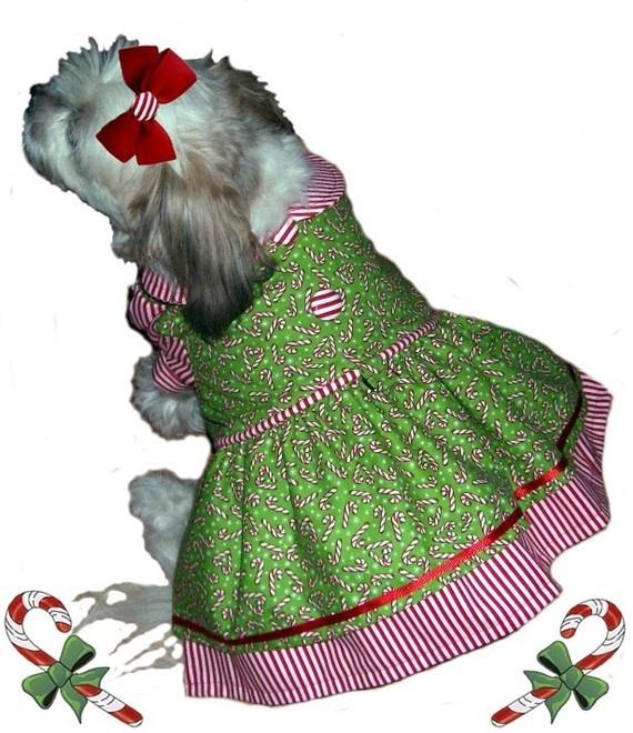 71 besten Doggie clothes & patterns Bilder auf Pinterest ...