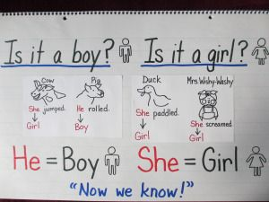 Grammar: Pronouns.  This chart uses some very familiar characters (from Mrs. Wishy-Washy) to help remember pronouns. from ChartChums
