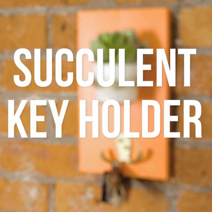 DIY Succulent Planter Key Hook