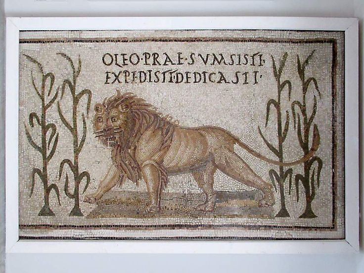 This 3rd century AD Roman mosaic of a gigantic lion between stalks of millet is in the Musée National du Bardo in Tunis, Tunisia.