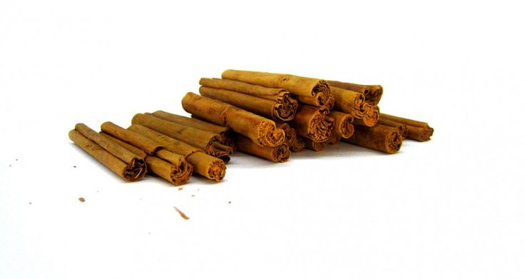 Study links cinnamon consumption to reversal of Parkinson disease-related changes