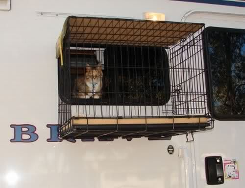 Window cat cage | RV.Net Open Roads Forum: RV Pet Stop  Well, would you look at that.  Looks like ppl do this.