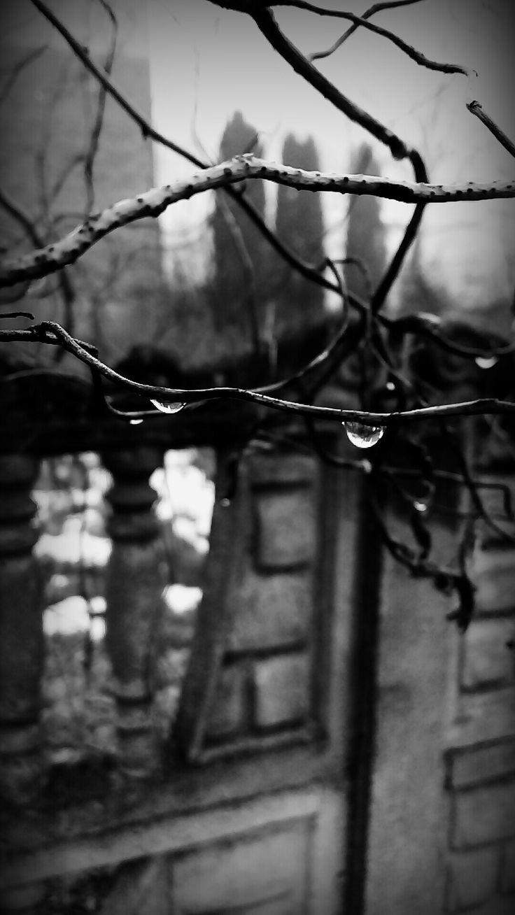 Black and white, rain  ☁☁