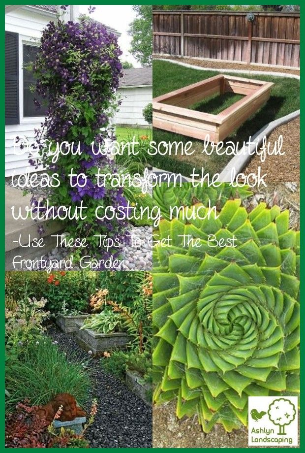 503d8c1340ce104673f12f642338f188 - What Are The Basic Gardening Techniques