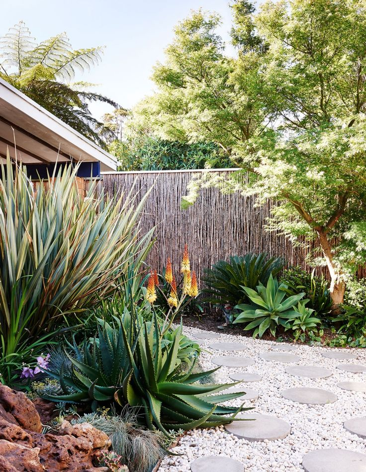 Tropical garden in melbourne australia that incorporates for Courtyard landscaping australia