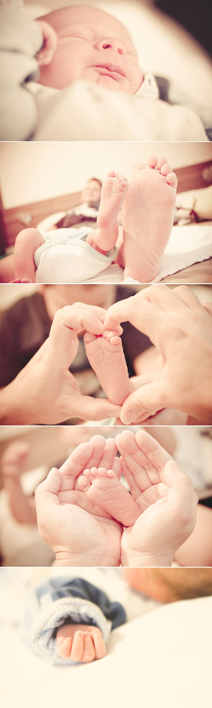 take photos of the babys hands feet nose ears everything so you can remember exactly how small they were once
