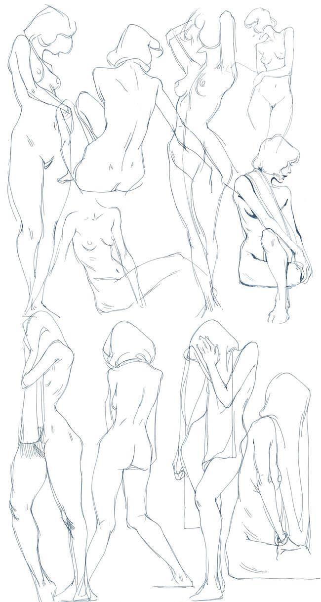 Enchanting Female Anatomy Sketch Mold - Human Anatomy Images ...