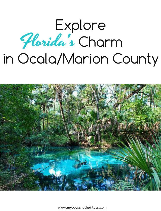 Explore Florida S Charm This Spring In Ocala Marion County