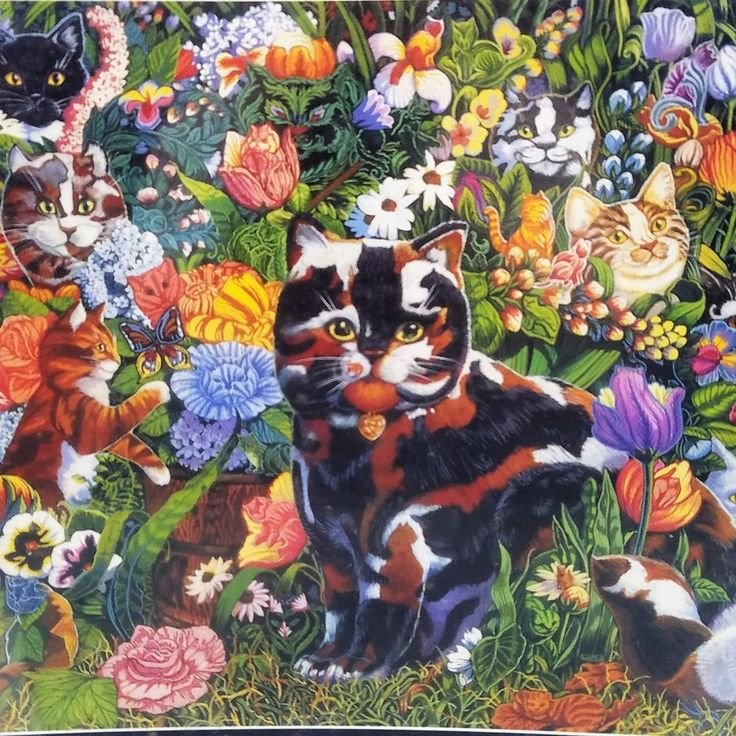 80 Cats Jigsaw Puzzle Feline Frenzy 1000 Pc Lewis Johnson