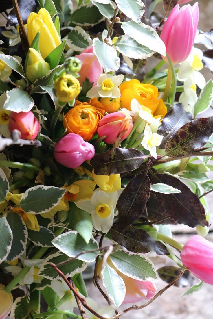 The 22 Best February English Country Flowers By Common Farm Flowers