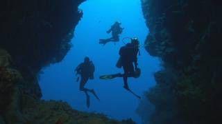♥ DEVELOP YOUR INTERESTS - SCUBA DIVE!! Dakuwaqa's Garden - Underwater footage from Fiji & Tonga, via YouTube.  CLICK & WATCH!!