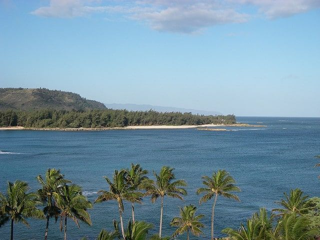 """During a recent stay to Turtle Bay Resort, I overheard someone saying this, """"Turtle Bay is great resort to stay at in Hawaii where you don't have to leave the resort."""" I tend to agree. Once you get to Turtle Bay Resort, you really don't need to leave it, and there's a good chance you wouldn't..."""