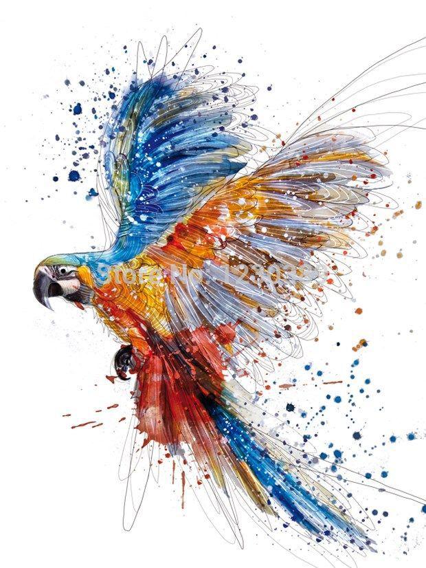 parrots oil paintings -   Google