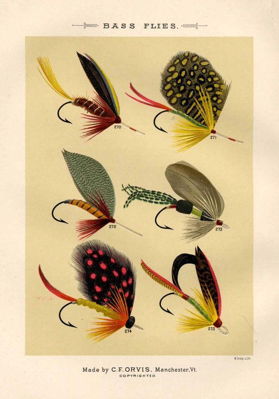 Bass Flies - Fly fishing poster