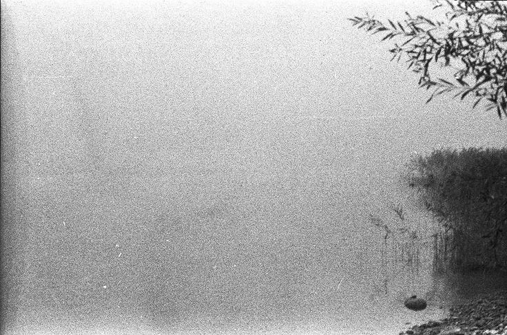 Fog #01 – analog ISO3200