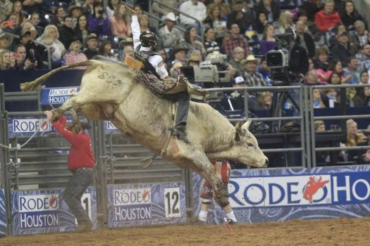 Have you ever seen a chaotic bull ride in slow motion? Click to see the action from RodeoHouston frame-by-frame on Chron.com.