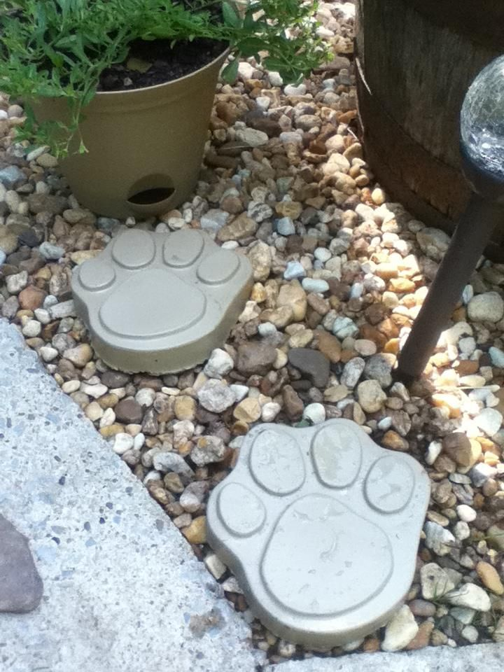 57 Best Images About Stepping Stones Cement On Pinterest