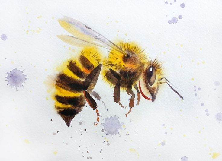 Buy Bee #2 🐝 Super Summer Sale 🐝, Watercolor by Olga Beliaeva Watercolours on Artfinder. Discover thousands of other original paintings, prints, sculptures and photography from independent artists.