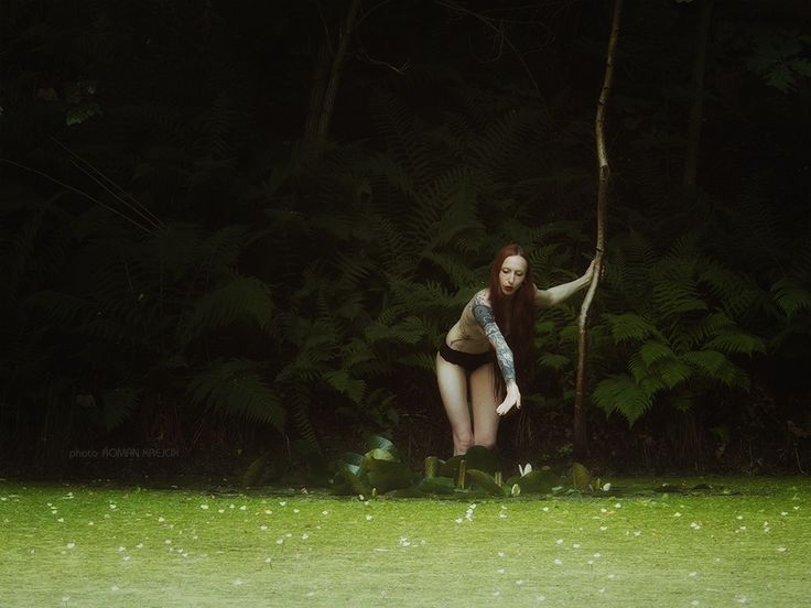 Flooded quarry suicides 2. - Shot over a pond covered with water plants with…