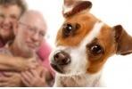 Il segreto per vivere a lungo? Un cane, un matrimonio felice e tanti buoni amici