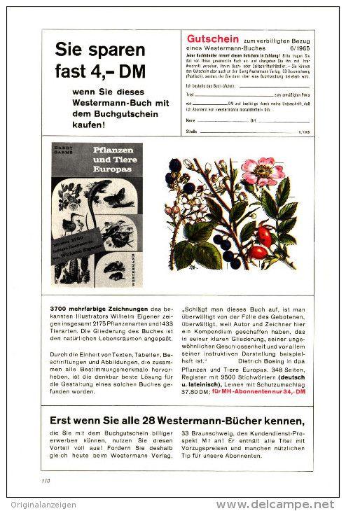 Original-Werbung/Inserat/ Anzeige 1965 - 1/1-SEITE : PFLANZEN UND TIERE EUROPAS / VERLAG WESTERMANN  - ca. 170 x 250 mm